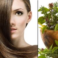 Herbal Hair Loss Remedies
